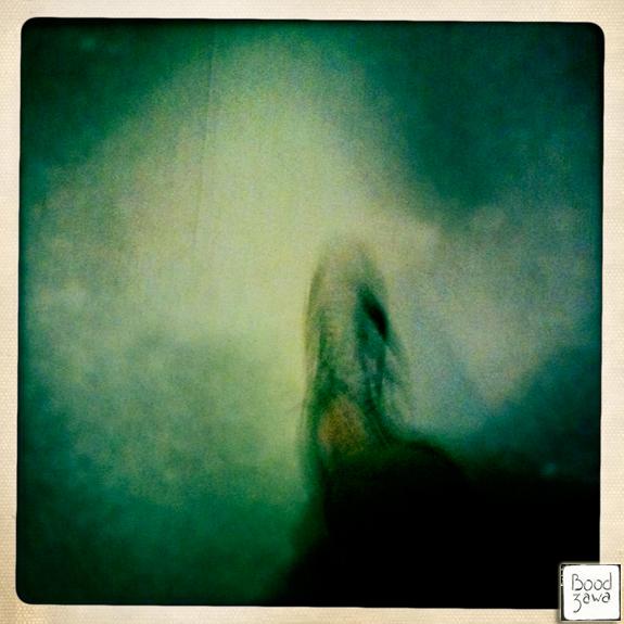 pied-chaussure-pierre