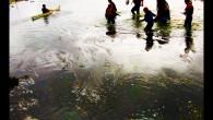 """- C'est quoi cet endroit où tu nous entraînes? T'as vu la couleur de la flotte ! – Tais-toi et patauge ! La marée monte au galop. Faudrait pas qu'on...<div class=""""addthis_toolbox addthis_default_style addthis_"""" addthis:url='http://www.boodzawa.com/la-vase/' addthis:title='Dans la vase ' ><a class=""""addthis_button_facebook""""></a><a class=""""addthis_button_twitter""""></a><a class=""""addthis_button_email""""></a><a class=""""addthis_button_pinterest_share""""></a><a class=""""addthis_button_compact""""></a><a class=""""addthis_counter addthis_bubble_style""""></a></div>"""