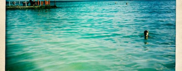 """– Allez, viens ! Elle est super bonne ! – Nan, tu sais bien que je n'aime pas me baigner. – T'es vraiment zarbi. Pour tes vacances, tu choisis toujours...<div class=""""addthis_toolbox addthis_default_style addthis_"""" addthis:url='http://www.boodzawa.com/phobie-de-mer/' addthis:title='Phobie de mer ' ><a class=""""addthis_button_facebook""""></a><a class=""""addthis_button_twitter""""></a><a class=""""addthis_button_email""""></a><a class=""""addthis_button_pinterest_share""""></a><a class=""""addthis_button_compact""""></a><a class=""""addthis_counter addthis_bubble_style""""></a></div>"""